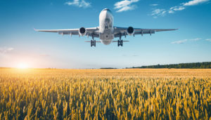 Large aircraft flying over a field of wheat